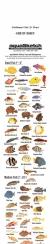AquaSketch Single Color Caribbean ID Scroll - Product Image