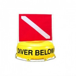 Inflatable Flag-N-Float  - Product Image