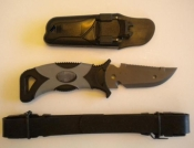 Titanium Pointed Coated Knife with Plastic Shealth # T-1 - Product Image