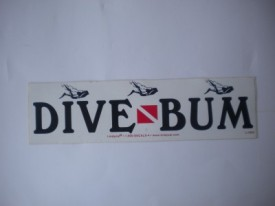 Dive Bum Diver Decal - Product Image