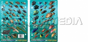 Florida & Caribbean Fish ID Card - Product Image